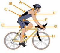 Optimize Cycling and Triathlon Performance